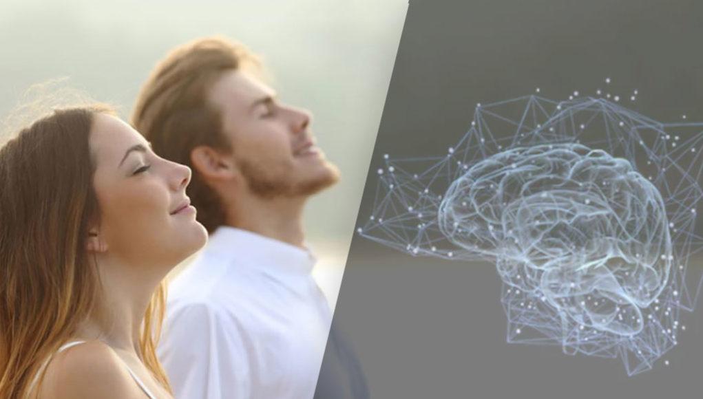 Comment reprogrammer ton cerveau en 10 minutes par jour ?